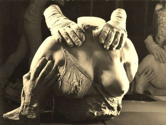 Solo carne -  Terracotta - cm 60x50